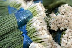Bündel Frühlingszwiebeln in einem lokalen Markt in Bangkok, Thailand Stockfotografie
