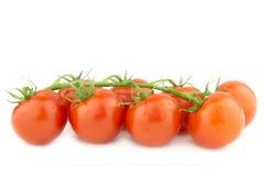 Bündel frische Cocktail-Tomaten auf weißem Hintergrund Stockbilder