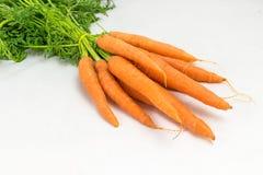 Bündel frische Karotten Stockbild