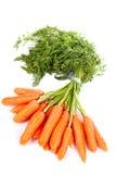 Bündel frische Karotten Stockfotografie