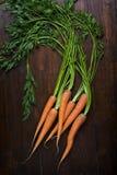 Bündel frische Karotten Lizenzfreie Stockfotos