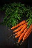 Bündel frische Karotten mit grünen Blättern auf dunklem Hintergrund Flache Lage Beschneidungspfad eingeschlossen stockbilder