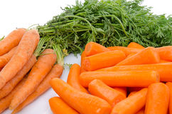 Bündel frische Karotten und Haufen von abgezogenen Karotten Stockfoto