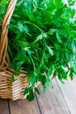 Bündel frische organische Petersilie vom Garten in einem Weidenkorb, auf hölzerner Tabelle der Planke, rustikale Art Lizenzfreie Stockbilder