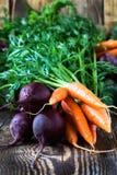 Bündel frische organische Rote-Bete-Wurzeln und Karotten stockbilder