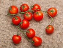 Bündel frische Tomaten auf dem Rausschmiß Lizenzfreie Stockfotografie