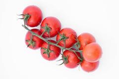 Bündel frische Tomaten mit Wassertropfen Stockbilder