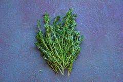 Bündel frischer grüner Thymian am Hintergrund des blauen Graus stockfotografie