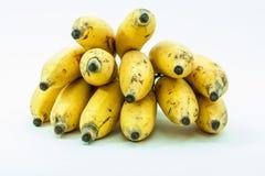Bündel gelbe kleine Bananenfrucht Stockfoto