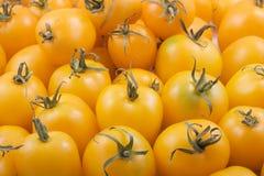 Bündel gelbe Tomaten Stockfotos