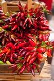 Bündel glühender Paprikapfeffer am Markt Stockbild