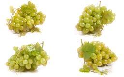 Bündel grüne Trauben getrennt auf weißem Hintergrund Satz oder Sammlung lizenzfreies stockbild