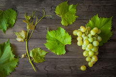 Bündel grüne Trauben mit Blättern auf dem hölzernen Hintergrund Lizenzfreie Stockfotos