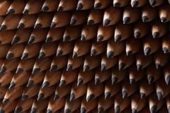 Bündel identische Graphitbleistifte Lizenzfreies Stockbild