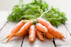 Bündel Karotten Lizenzfreie Stockfotografie