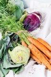 Bündel Karotten und Kohlrabi Stockbilder