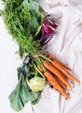 Bündel Karotten und Kohlrabi Stockbild