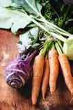 Bündel Karotten und Kohlrabi Lizenzfreie Stockbilder