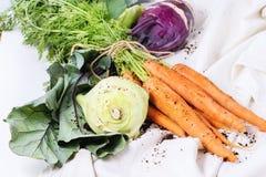 Bündel Karotten und Kohlrabi Stockfotos