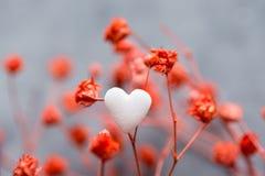 Bündel kleine rote empfindliche Blumen sondern weiße Schnee-Herz-Form Sugar Candy auf dunklem Grey Background aus Romantischer Va Lizenzfreies Stockfoto