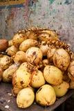 Bündel Kokosnüsse Stockfotos