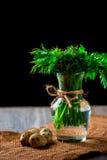 Bündel Petersilie und Dill in einem Vase Viele Wachteleier als Hintergrund Lizenzfreie Stockfotografie