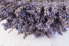 Bündel Purpur getrocknete Lavendelblumen lizenzfreie stockfotos