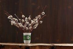 Bündel Pussyweidenzweige im grünen Vase auf hölzernem Hintergrund Stockfoto
