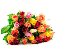 Bündel-Regenbogen-Rosen flach auf weißem Hintergrund stockbild