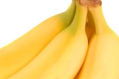 Bündel reife frisch ausgewählte gelbe Bananen Stockfotos
