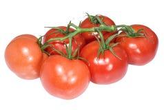 Bündel reife Tomaten lokalisiert auf Weiß Lizenzfreie Stockfotografie