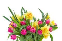 blumenstrau von rosa tulpen und von gelben narzissen. Black Bedroom Furniture Sets. Home Design Ideas