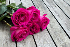Bündel rosafarbene Rosen lizenzfreies stockbild