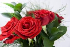 Bündel rote Rosen Lizenzfreie Stockfotos