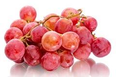 Bündel rote Trauben stockfoto