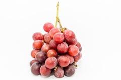 Bündel rote Trauben Stockbild