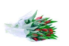 Bündel rote Tulpen Stockfoto