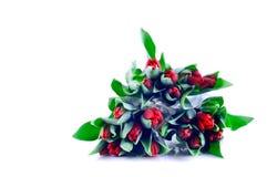 Bündel rote Tulpen stockbilder
