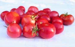 Bündel saftige reife frische rote Tomaten auf einem weißen Baumwollstoff im Biogarten, mit unscharfem Hintergrund Gesundes rohes  Stockbilder