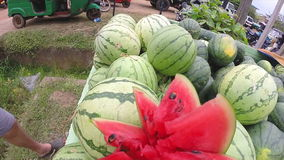 Bündel saftige Wassermelonen am Sonntags-Markt in Sri Lanka stock video