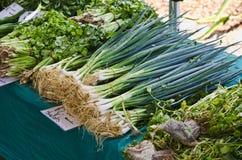 Bündel Schalotten auf Marktstall Lizenzfreies Stockfoto