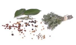 Bündel Thymian, Blattod-Lorbeer und bunte Samen stockbild