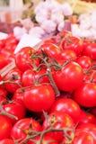 Bündel Tomaten Lizenzfreies Stockbild