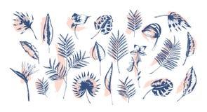Bündel tropische Blätter der verschiedenen Betriebshand, die mit Tiefenlinien gegen rosa Farbe gezeichnet wird, verfolgt auf Hint Lizenzfreie Stockfotografie