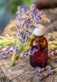 Bündel von Lavandula- oder Lavendelblumen und von Ölflasche sind auf lizenzfreie stockfotografie