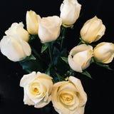Bündel weiße Rosen Stockfotografie
