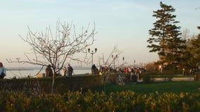 Bürger gehen auf Damm in der glättenden Sonnenuntergangzeit im Frühjahr stock video footage
