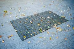 Bürgersteig, der Beschaffenheit pflastert Stockfotografie