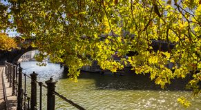 Bürgersteig durch den Flussufer von Gelagefluß an einem sonnigen Tag unter einem Kastanienbaum in Berlin, Deutschland stockbilder