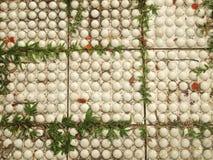 Bürgersteig hergestellt von den Ziegelsteinen Stockfotos